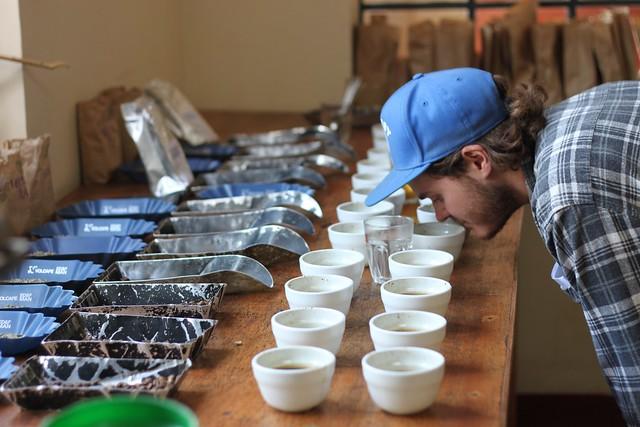 Cupping, CKCM, Nyeri, Kenya