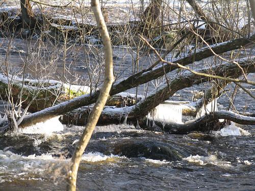 Rolfs ån