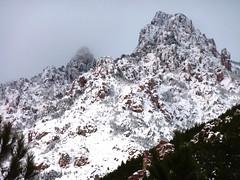 Le Haut Cavu sous la neige (22/01/2011) : Punta di Monte Sordu