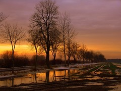 winter colours (JoannaRB2009) Tags: trees winter sunset sky sun snow water reflections colours flood path poland polska fields lodz d centralpoland coth5 may