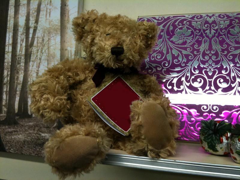 Bear sighting adventures  valentines teddy bears