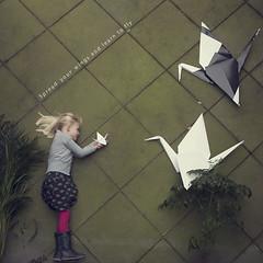 6 of 365 (Morphicx) Tags: dutch origami crane emma 5d 365 deventer 2470f28l janvonholleben 365shotsin365days
