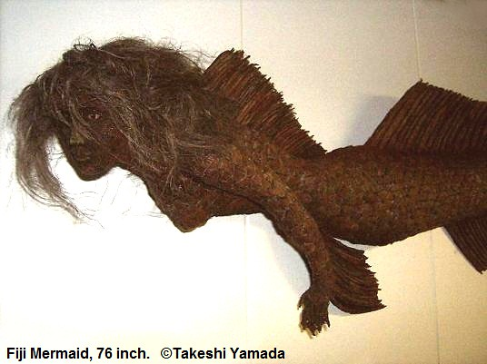Fiji Mermaid (6 feet detail) by Museum of World Wonders (Dr Takeshi Yamada)