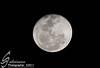قمر (s.alsaiary) Tags: تصوير القمر تجربه