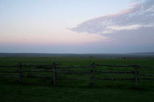 Koele Paddocks at Sunrise