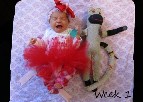 Week 1 - February 12, 2011