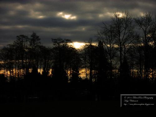 02-24-2011_sunthruclouds