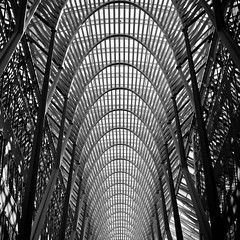 Because I've Learned to Be Alone (Thomas Hawk) Tags: bw toronto ontario canada architecture delete2 fav50 10 save3 save7 save8 delete save save2 fav20 save4 save5 save10 save6 bceplace fav30 santiagocalatrava fav10 save11 fav25 fav40 allenlambertgalleria moviscrolliosis superfave brookfieldplace toronto0810dmu toronto0810buzz savedbythehotboxuncensoredgroup