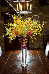 Wedding Floral San Martin, Yellow Orchids Centerpieces (Signature Bloom) Tags: pictures flowers wedding decorations summer flower floral yellow modern for design orchids designer events feather sanjose images winery reception designs florist vendor siliconvalley weddings bridal decor peninsula southbay ideas whimsical weddingflowers arrangements sanmartin hotpink sanjoseca florists specialevents centerpieces floraldesigner closlachancewinery sanmartinca 95121 oncidiumorchids chynadarnerphotography mokaraorchids yellowwedding 95046 flowersforwedding sanjoseflorist sanjoseweddingflowers wwwsignaturebloomcom sanjoseweddingflorist sanjosefloraldesigner weddingfloristsanjoseca