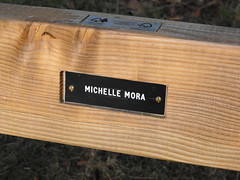 My Mum's Memorial Bench, The Cyril Hart Arboretum (william.henderson) Tags: forest sheep dean hart baa cyril forestofdean cyrilhart