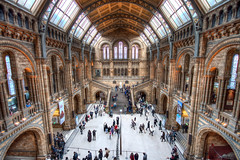 Natural History Museum Main Hall (TheFella) Tags: canon eos 500d photo photograph hdr highdynamicrange slr dslr high dynamic range digital processing postprocessing photomatix photoshop europe uk unitedkingdom london capital gb greatbritain england kensington kensingtonandchelsea naturalhistorymuseum nhm building architecture hall mainhall centralhall people museum southkensington renaissance germanromanesque francisfowke alfredwaterhouse hdrs