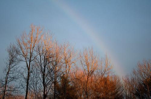 Afternoonrainbow
