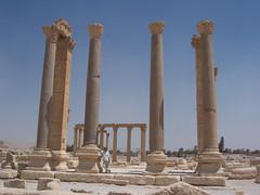 Colonnade at Palmyra (III)