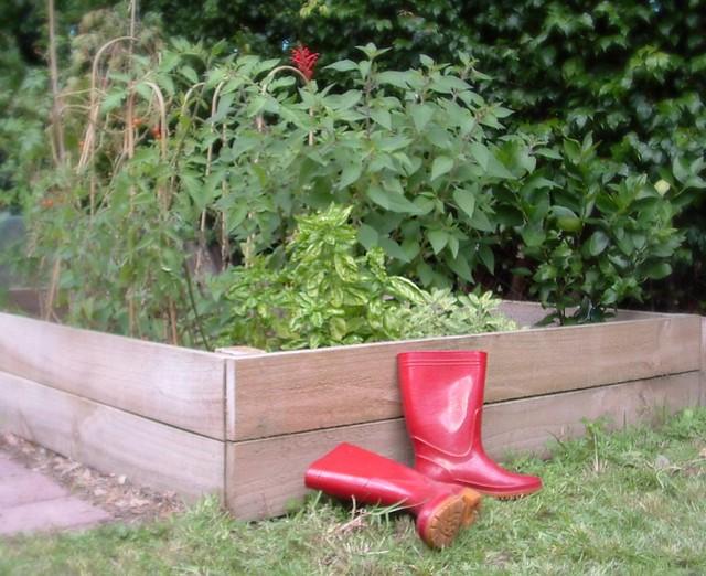 Little veggie patch