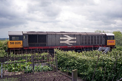 58025 stables next to the allotments at Shirebrook. (jezdgould) Tags: bone britishrail brel toton railfreight class58 shirebrook 58025 rustonpaxman