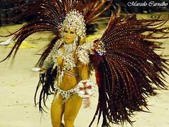 Destaque da So Clemente_Carnaval 2011_Rio de Janeiro (FM Carvalho) Tags: carnival brazil rio brasil riodejaneiro de samba do janeiro sony cybershot carnaval escola sonycybershot carioca brsil passarela sambdromo marqus escoladesamba sapuca marqusdesapuca apoteose sambaschool passareladosamba carnavaldoriodejaneiro riocarnival carnavalcarioca carnavaldorio soclemente hx5v sonyhx5v