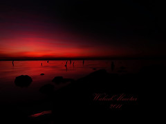 orange day (Waleed Almotar) Tags: new sea orange day kuwait waleed       almotar