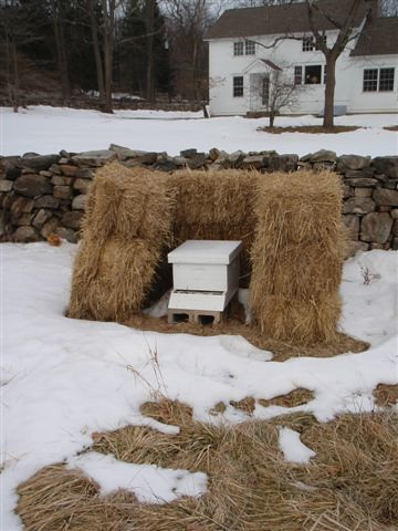 Hay bales are used to insulate this bee hive from cold winter winds. Pollinators are an important partner to the farm's fruit and vegetable production.