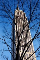 Empire State Building (Neelesh Jethwa) Tags: city nyc usa snow newyork lights 2010 rockafeller neelesh wintuk bhphotoleicastreetphotographycontest