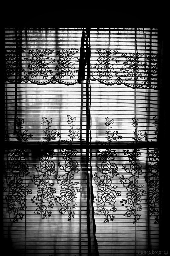 41/365 Don't look in my window...