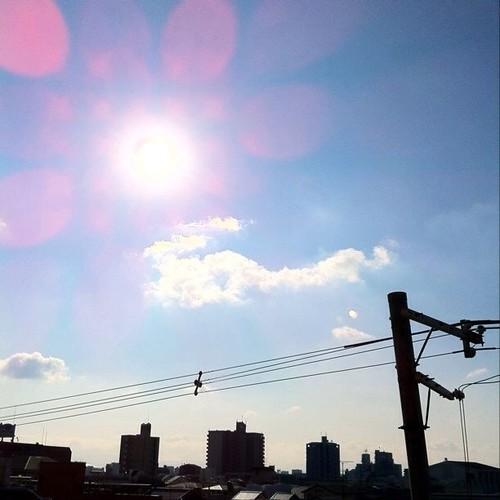 今日の写真 No.120 – 昨日Instagramへ投稿した写真(2枚)/iPhone4 + Photo fx、Pro HDR
