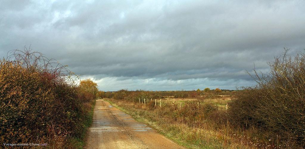 Petite route dans ce paysage plat et l'horizon lointain