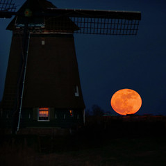 SuperMoon rising at our Dutch glory (Bn) Tags: blue light sunset sky holland mill love window nature netherlands windmill skyline stars geotagged star earthquake topf50 force earth luna full tsunami moonrise moonlight strength bluehour harvestmoon topf100 lunar tidal orbit topf200 cosy closest anno gravitation landsmeer nearest disasters 1907 1572 maan molenaar oostzaan perigee twiske 100faves 50faves 200faves binnenkruier poldermolen grondzeiler supermaan twiskemolen supermoon geo:lon=4897051 geo:lat=52435019 perigeesyzygy hetluijendijkje3 robertjanprins