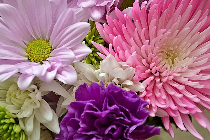 Flowers3 edited