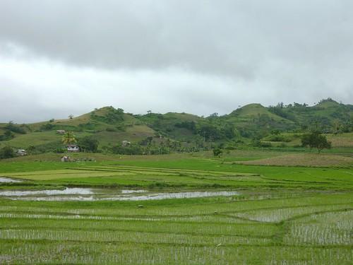 Negros-San Carlos-Bacolod (66)
