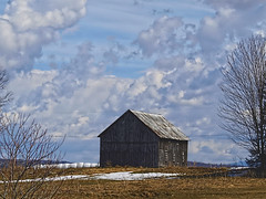 Barn In Spring Time