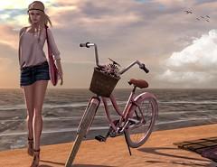 sun-bike--summer-2