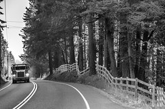 Trucker on May Valley Highway BW (Don Thoreby) Tags: mayvalley mayvalleywashingtonstate horsefarms farms barns mayvalleyhighway squakmountain autumn fall ranch horseranch ranchfence fenceline
