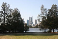 city view from Heirisson Island (superholly0926) Tags: australia kangaroo perth causeway   perthcity heirissonisland