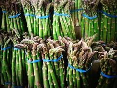 [Free Image] Food/Drink, Vegetable, Asparagus, 201101300100