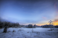 Blue moment (Barry_Madden) Tags: trees winter sunset moon snow tree nature field forest suomi finland landscape evening countryside frozen scenic freezing talvi hdr lappeenranta photomatix tonemapped