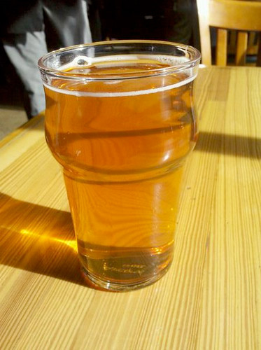 Pliny the Younger in the sunlight