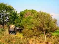 Especial Vallenar - Serena (Trochametrica, Recorriendo El Norte de Chile) Tags: chile train tren gm cap laserena emd romeral gr12 ferronor islón