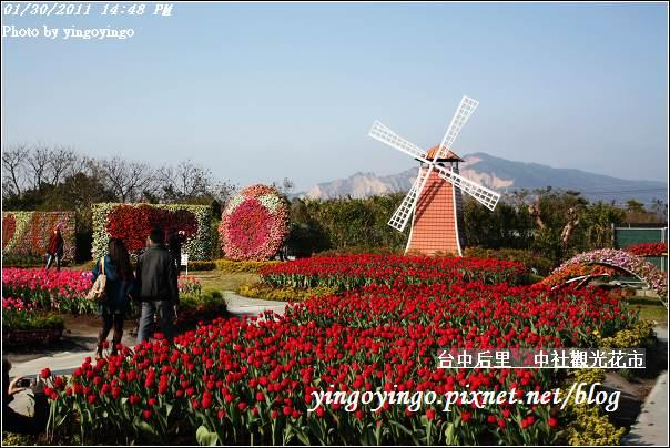 台中后里_中社光觀花市20110130_I6238