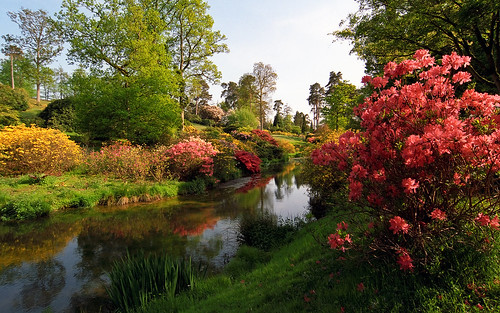 Leonardslee Gardens, Lower Beeding, West Sussex, England | 8 Free Activities To Enjoy Wherever You Travel - Spend Some Quality Time in the Public Parks and Gardens