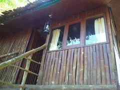 100_0189 (travellersai) Tags: kerala treehouse wayanad teaestate wildboar bandipur chital vythri banasuradam soojiparafalls streamvalleyresorts