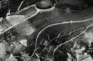 silver thread walk on Winter ice world / 銀糸が夜を覆いつくす