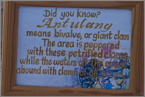 The meaning of ANTULANG :) | Flickr - Photo Sharing!