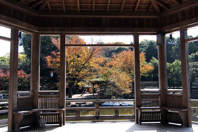 20101116_114826_奈良公園_浮見堂