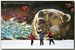 Boys Will Be Boys (Lisa-S) Tags: bear winter portrait snow jason toronto ontario canada boys graffiti lisas snowballs throwing alun 4977 trystan 50d gappool copyright2011lisastokes gicno