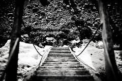 Downstairs (Poxonaut) Tags: blackandwhite bw architecture strand denmark verschiedenes rope balticsea stairway treppe architektur sw various miscellaneous schwarzweiss ostsee langeland dnk seil dkdaenemark