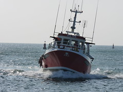 Retour de pche, le Guilvinec, France, The fishing ship coming back in Brittany (Phil Nistre) Tags: blue sea france water port harbor brittany harbour bretagne breizh fishingship leguilvinec buoyant bateaudepche