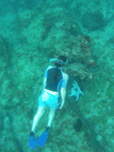 Jamaica Vacation, Negril, Treasure Beach, Montego Bay Feb 4 to 11 2011           -10