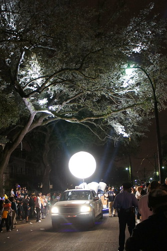 Spotlights on a Live Oak