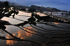 Terraces Mirror  (Melinda ^..^) Tags: china cloud color reflection nature water field colorful chinese terraces mel melinda yunnan yuanyang    chanmelmel