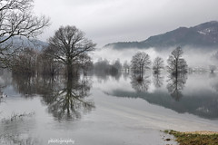flooded field (IgorK54) Tags: reflection field flood greatphotographers planina flickraward planinskopolje dragondaggeraward elitephotographers qualitygold flickraward5 mygearandme mygearandmepremium mygearandmebronze mygearandmesilver mygearandmegold mygearandmeplatinum mygearandmediamond flickrawardgallery greaterphotographers sunofgodphotographer greatestphotographers ultimatephotographers masterclasselite